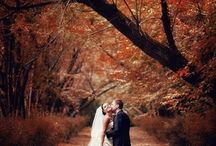 Wedding - photos / by Michelle Johnson