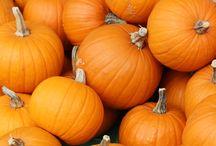 Halloween Inspirations / POCOPATO Halloween inspirations :)