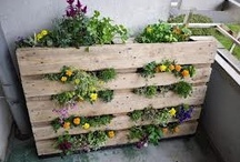 pallets and pallets