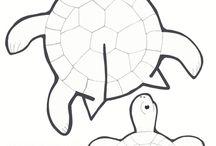 Hajtogatott teknősbéka