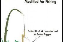 Caza pesca
