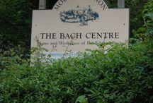 Bach Centre / Il mio viaggio al Bach Centre. Sul mio blog anche il racconto del viaggio: http://goo.gl/K6s9qU