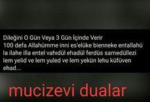 Dualar 2