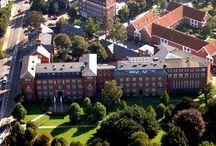 Lillebaelt Academy / Odense, Denmark