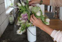 Bloom arrangements