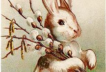 Húsvét nyúl