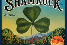 Vintage St. Patrick's Day / by Jamie Jackman
