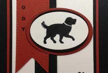 Pet Board
