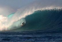 Favorite Surfing Videos