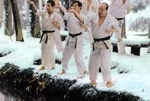 Budo / Kyokushin Karate. Kendo. Samurai. Japanese martial arts.