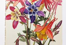 flowertattoo