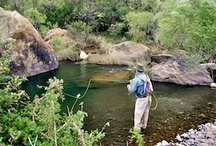 """5 Favourite Spots Around Rhodes / Nightjar Travel honed our flyfishing skills over many years of frequenting the rivers and lakes around Rhodes in the Eastern Cape.  Although the rivers are sometimes fickle, as you can expect at such altitude in the Drakensberg, there is no better fishing than when these rivers are """"on""""...  The following pins are a brief, brief list of our favourite spots - although with the sheer amount of water in the area, when we do go the list of options is inevitably as long as the one that got away..."""