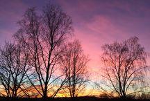 Taivaan värit