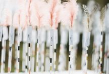 Spring Wedding Ideas / by Tamara Burke