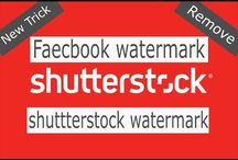 shutterstcok images free
