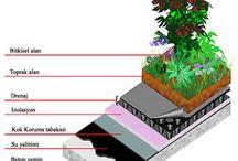 çatı bahcesi