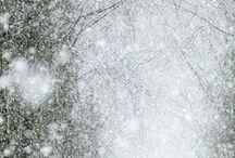 De Winter / De winter