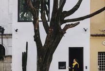 Huizen Vila,s bungalow,s