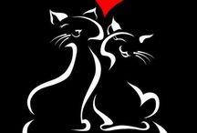 Kediler çini