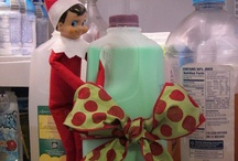 Elf on the Shelf Ideas / by Chelsea LeFevre