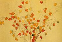 Marguerite burnat provins 1872 1952