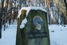 Fotowinter  Sächsische Schweiz / Bei Schnee und Eis bieten sich in der Sächsischen Schweiz eindrucksvolle Blicke - stimmungsvolle Fotos im Winter-Look.