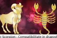 taur scorpion