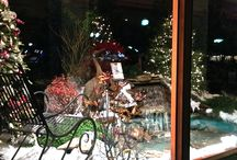 Special Holiday Display created for The Streets of Chester Shopping Center in Chester, NJ / In collaboration with Plant Detectives Nursery Earth, Turf & Blooms built an outdoor Winter Wonderland for passers by to enjoy.
