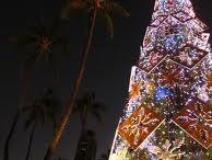 Hawaiian Christmas:) / by C. Banes