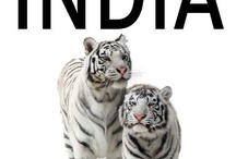 E-Book For, By, On, About - India