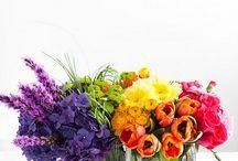 Flowers / by Julie Rousculp