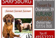 """Med Hjerte for Hunder på Rømmen / Missing dogs • Facebookpage; med hjerte for hunder på rømmen """"reserveløsning"""" • savnet hunder   Link til vår Facebook gruppe:  https://www.facebook.com/groups/729942270382489/?fref=ts"""