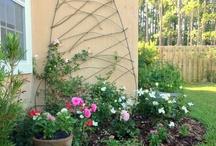 Our Home-Garden