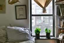 Back To School / fall, NYC, dorm rooms, text books, backpacks, pumpkin-spice, mums, taxis, oxfords... / by The Sill