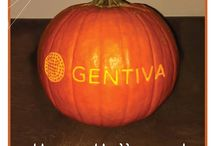 Gentiva - I Love my Job / by Kelly Robinson