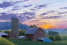 Country Barns / by Donna Shubrook Heacock