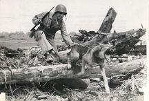 Photo gallery WW2