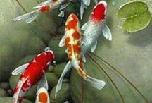 Рыбки..