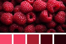 Red | Color inspirations