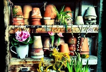 FLoWeR pOtS & aSsOrTeD CoNtAinErS / by diantique