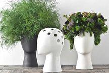 Plantas / Tablero de Plantas Yalosabes.com