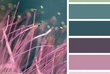 Colour boards