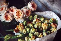 Les Fleurs / by Marlowe Miller