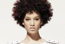 Afro-centric hair is beaut