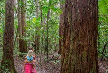 Queensland trip