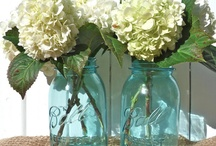 Blue Ball Jars / by Judy Ricard