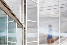 Doors & Windows / by Dominique Brammah