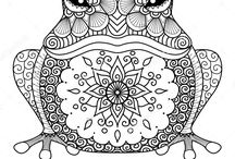 Frog colouring