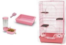 Cats And Cages