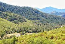 Applegate Valley Real Estate